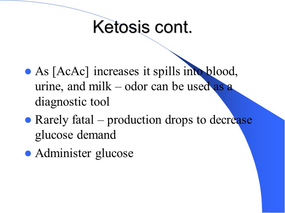 Ketosis cont. As [AcAc] increases it spills into blood, urine, and milk – odor can be used as a diagnostic tool.